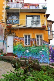 Valparaiso Chile Travel Blog (17)