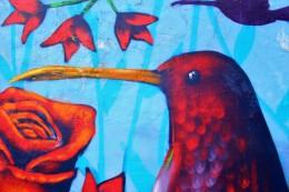 Valparaiso Chile Travel Blog (23)