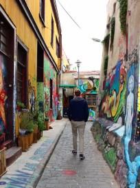 Valparaiso Chile Travel Blog (48)