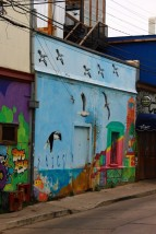 Valparaiso Chile Travel Blog (59)