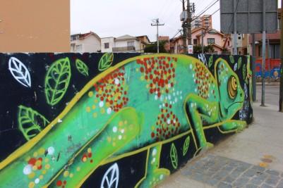 Valparaiso Chile Travel Blog (64)