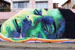 Valparaiso Chile Travel Blog (69)