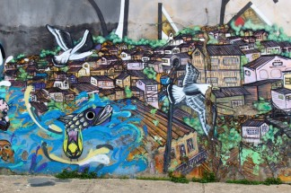 Valparaiso Chile Travel Blog (71)