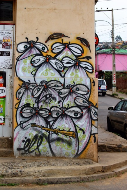 Valparaiso Chile Travel Blog (83)