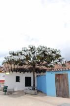 Bogota Colombia Travel Blog (12)