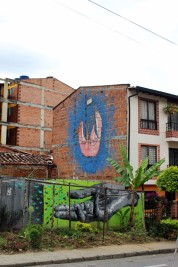Medellin Colombia Travel Blog (78)
