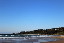 Australian Road Trip Travel Blog (116)
