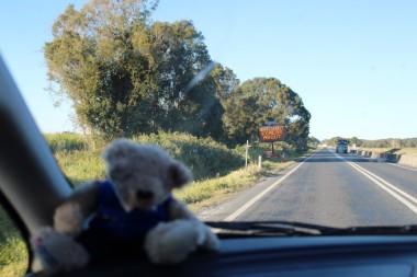 Australian Road Trip Travel Blog (131)