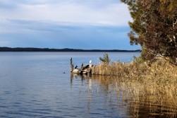 Australian Road Trip Travel Blog (20)