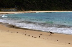 Australian Road Trip Travel Blog (29)