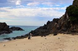 Australian Road Trip Travel Blog (30)