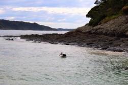 Australian Road Trip Travel Blog (31)