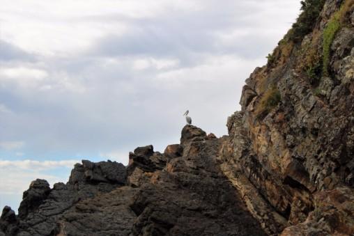 Australian Road Trip Travel Blog (33)