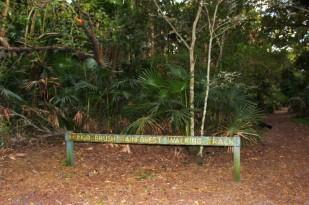Australian Road Trip Travel Blog (4)