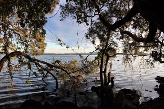 Australian Road Trip Travel Blog (7)