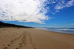 Australian Road Trip Travel Blog (74)