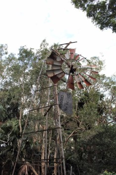 Australian Road Trip Travel Blog (8)