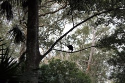 Australian Road Trip Travel Blog (9)