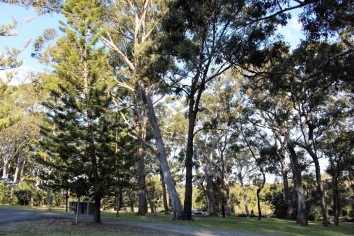 Australian Road Trip Travel Blog (99)