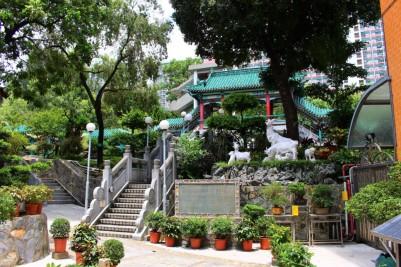 Hong Kong Travel Blog (123)