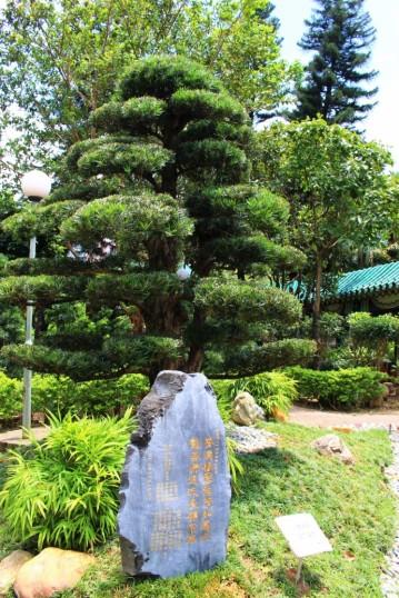 Hong Kong Travel Blog (125)