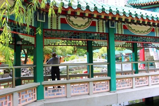 Hong Kong Travel Blog (126)