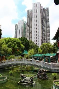 Hong Kong Travel Blog (127)