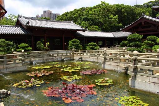 Hong Kong Travel Blog (132)