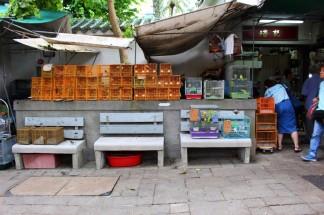 Hong Kong Travel Blog (144)