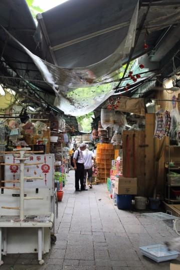 Hong Kong Travel Blog (148)