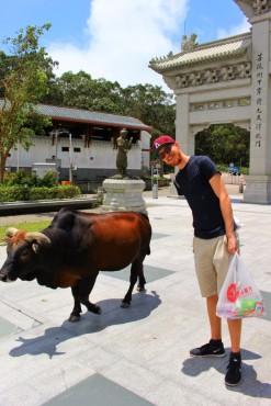 Hong Kong Travel Blog (34)
