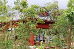 Hong Kong Travel Blog (65)