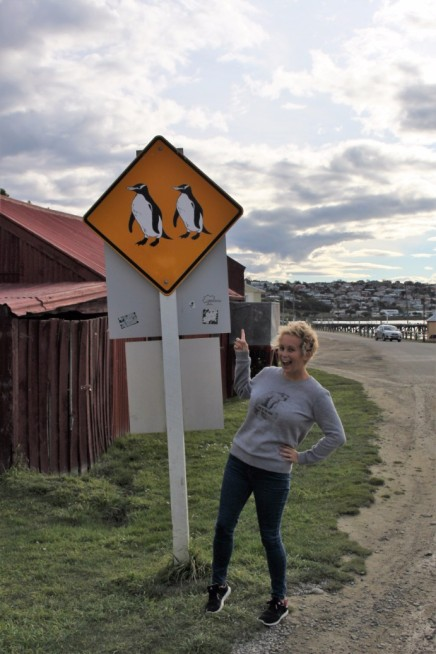 New Zealand Travel Blog 2 (10)