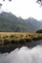 New Zealand Travel Blog 2 (47)