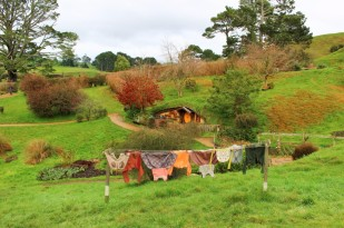 New Zealand Travel Blog 3 (21)