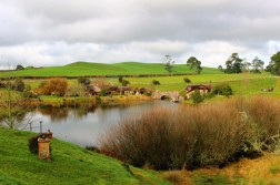 New Zealand Travel Blog 3 (45)