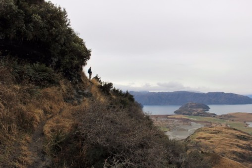 New Zealand Travel Blog 4 (9)