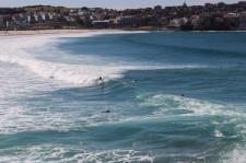Sydney Travel Blog (56)