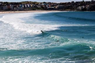 Sydney Travel Blog (57)