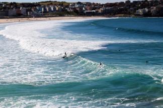 Sydney Travel Blog (58)