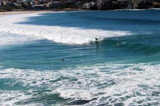 Sydney Travel Blog (59)