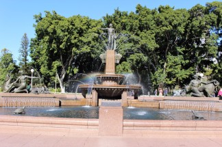 Sydney Travel Blog (6)