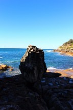 Sydney Travel Blog (63)