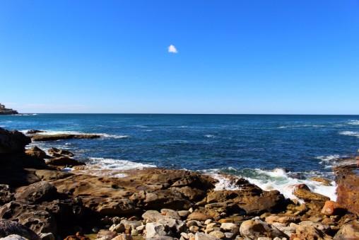 Sydney Travel Blog (65)