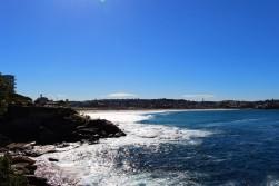 Sydney Travel Blog (66)