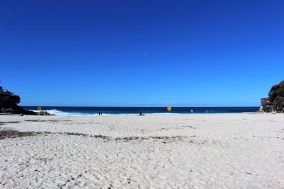 Sydney Travel Blog (69)