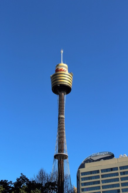 Sydney Travel Blog (8)