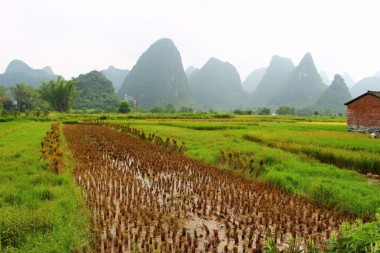 Yangshuo China Travel Blog (23)