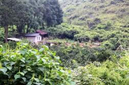 Yangshuo China Travel Blog (28)