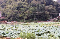 Yangshuo China Travel Blog (42)